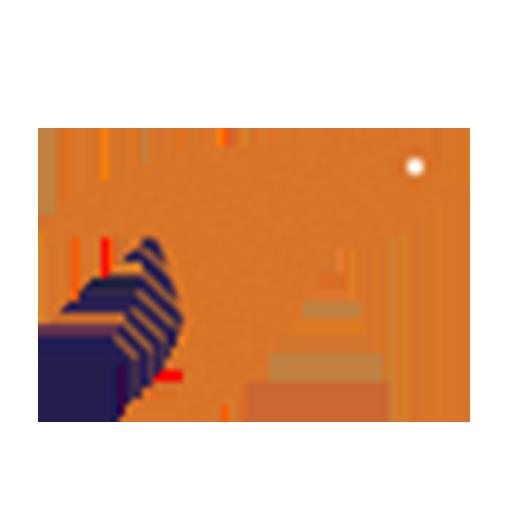 Exsitu orange bird